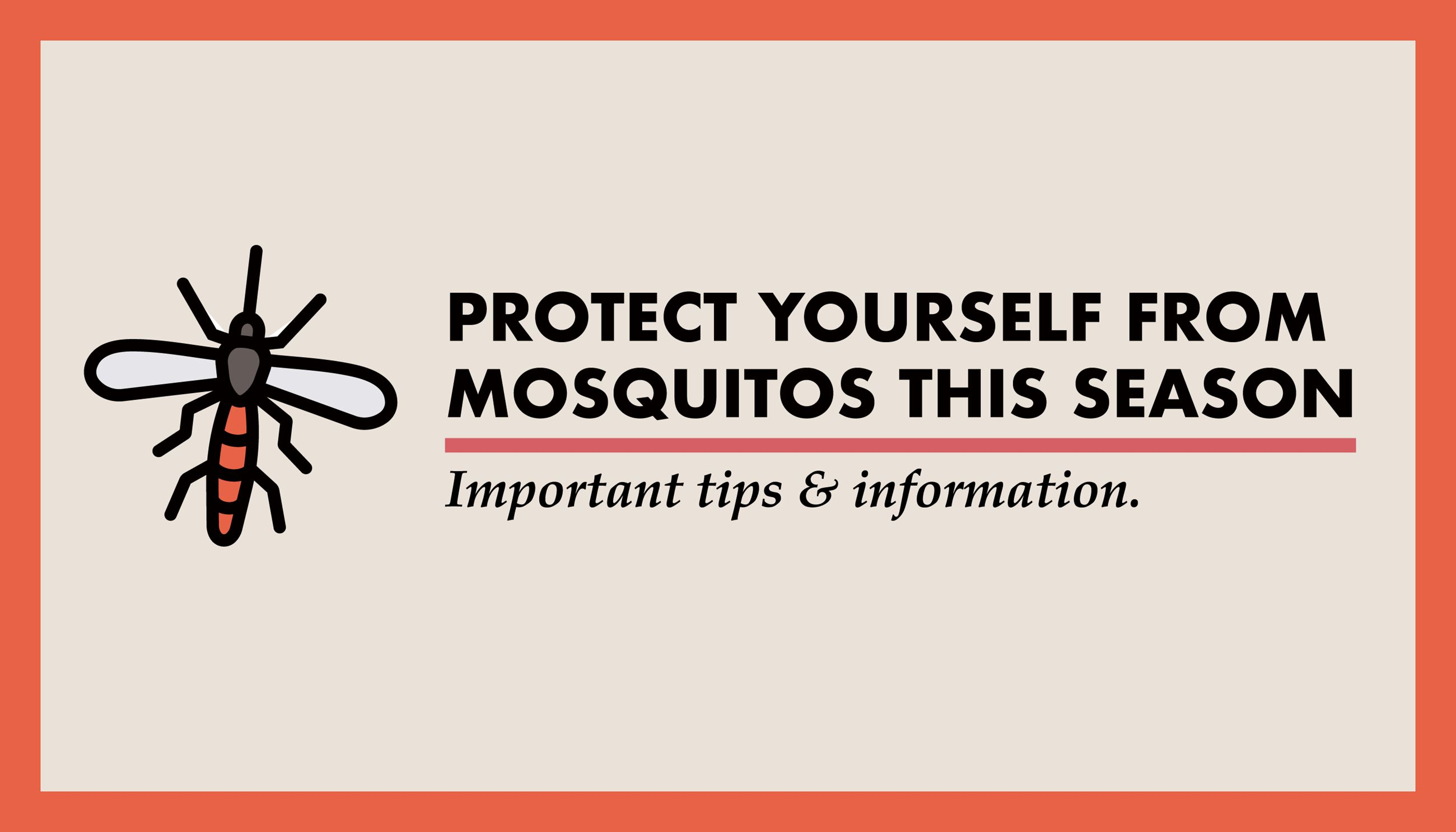 Mosquito Graphic for Website-01